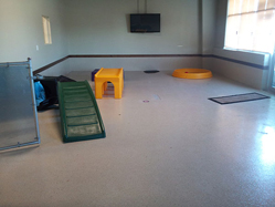 Coating Systems for Dog Kennels